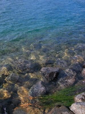 Rocks Along the Shore of a Very Blue Lake | Animals, Habitats, and Ecosystems