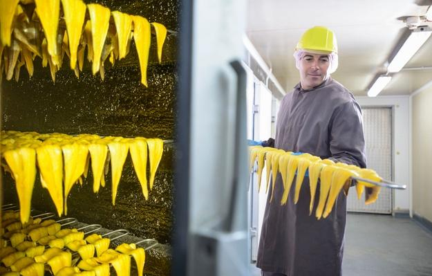 Worker Inspecting Smoked Haddock Fillets in Food Factory | Earth's Resources