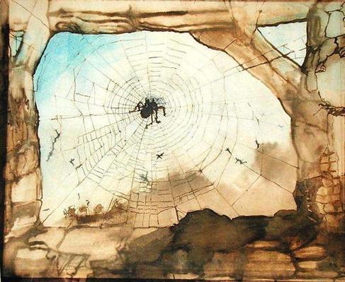 Vianden through a Spider's Web