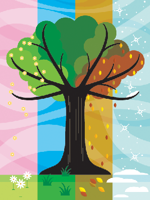 Tree Throughout Seasons | Clipart
