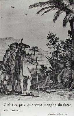 'C'est a ce prix que vous mangez du sucre en Europe', illustration from chapter 19 of 'Candide' by Francois Voltaire