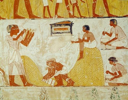 Recording the harvest, from the Tomb of Menna