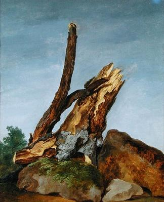 Study of Rocks and Branches, c.1795