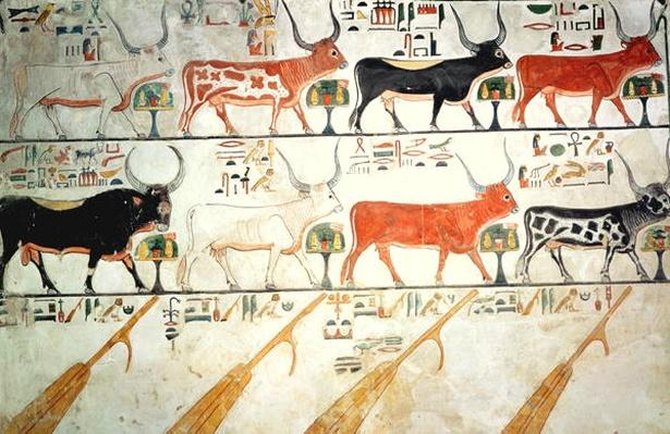 The seven celestial cows and the sacred bull and the four rudders of heaven, from the Tomb of Nefertari, New Kingdom