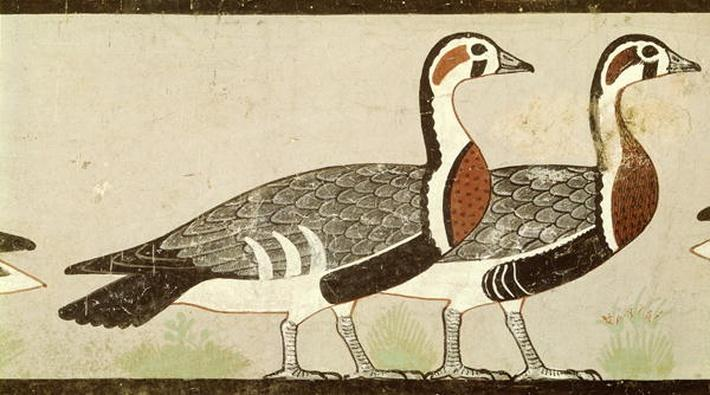 Meidum geese, from the Tomb of Nefermaat and Atet, Old Kingdom, c.2620 BC