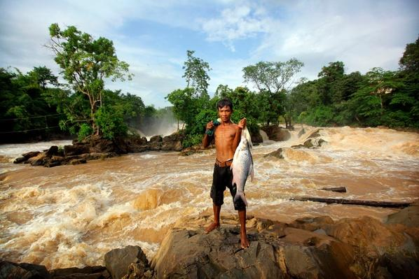 Laotian Fisherman Shows Catch From Mekong River | Earth's Resources