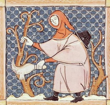 F.58v March: Pruning trees