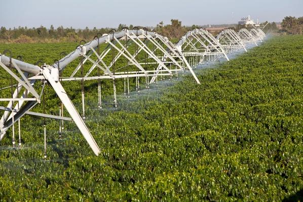 Irrigation on Coffee Crops | Earth's Resources