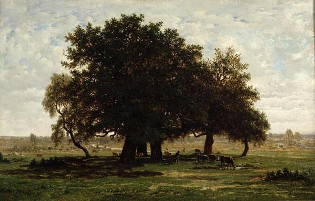 Holm Oaks, Apremont, 1850-52