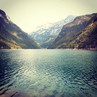Lago del Mis | Animals, Habitats, and Ecosystems