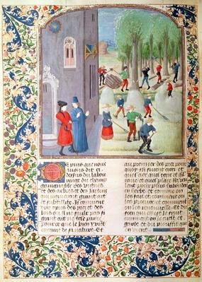 Ms 5064 fol.198v Cutting Trees and Harvesting, from 'Livre des Prouffitz Champestres' by Pietro de Crescenzi