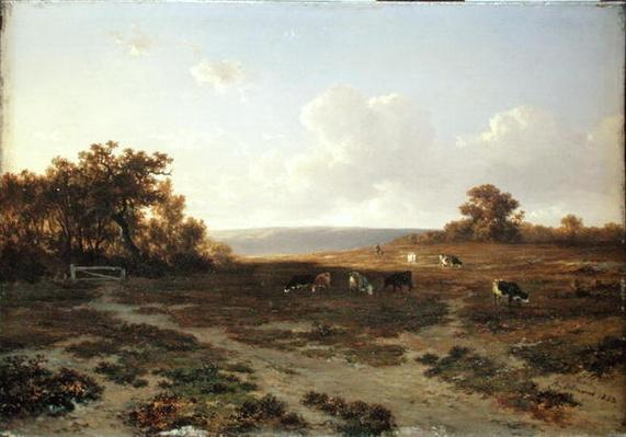 Heath Landscape with Cows, 1852