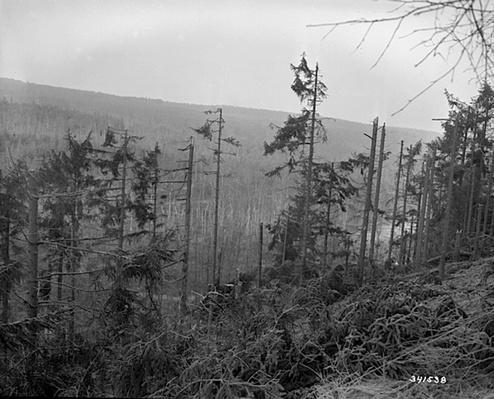 Hurtgen Forest | Ken Burns: The War