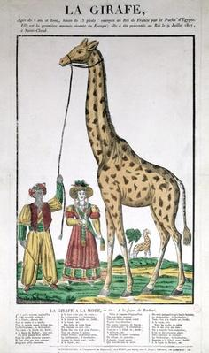 The Giraffe Presented to the King from the Pasha of Egypt, 9th July 1827