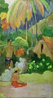 Landscape in Tahiti
