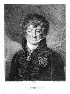 Portrait of Georges Cuvier