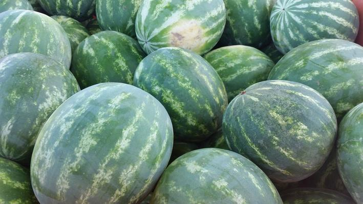 Watermelons | Valley's Gold