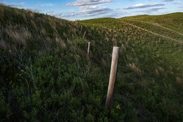 photo of a fence line in the sandhills