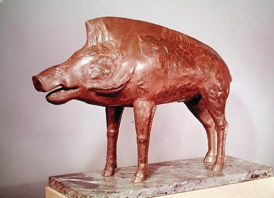 A wild boar, from Neuvy-en-Sullias