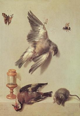 Still Life of Dead Birds and a Mouse, 1712
