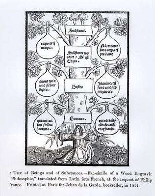 The Tree of Beings and Substance, printed in 1514, illustration from 'Science and Literature in The Middle Ages and Renaissance', written and engraved by Paul Lacroix, 1878