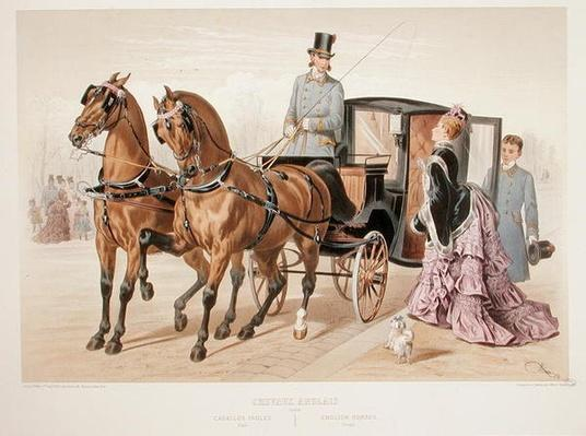 English Horses