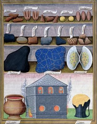 Ms Fr. Fv VI #1 fol.166r Illustration from the 'Book of Simple Medicines' by Mattheaus Platearius