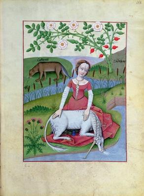 Ms Fr. Fv VI #1 fol.163r Illustration from the 'Book of Simple Medicines' by Mattheaus Platearius