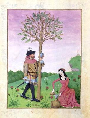 Ms Fr. Fv VI #1 fol.162v Drawing sap from a tree, Illustration from the 'Book of Simple Medicines' by Mattheaus Platearius