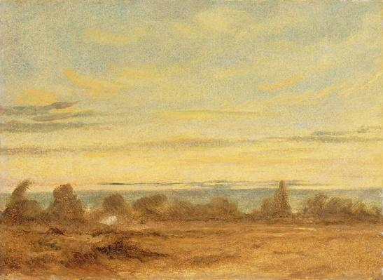 Summer - Evening Landscape
