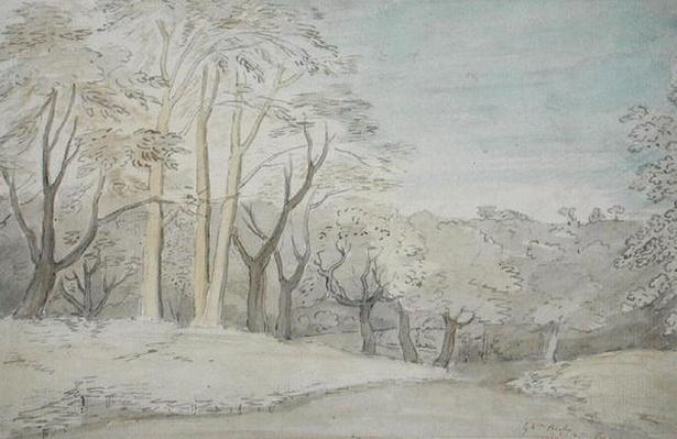 A Woody Landscape, c.1801