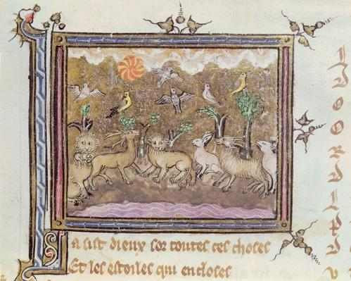 Ms 1044 fol.18 The Creation of the Animals, from Ovide Moralise written by Chretien Legouais