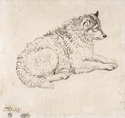 Arctic Dog, Facing Right