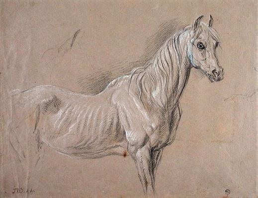 A Mare: possibly a study for 'L'Amour de Cheval', 1827