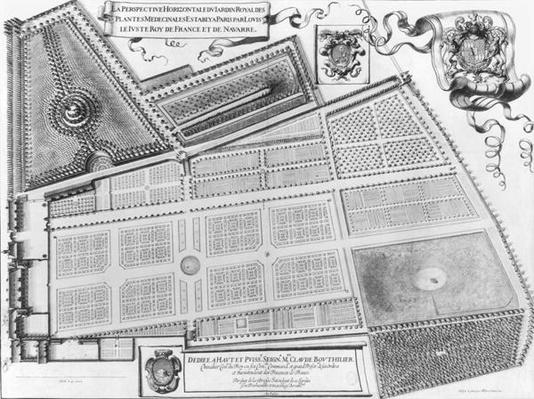 Plan of the Royal Garden of the Medicinal Plants in Paris, 1641
