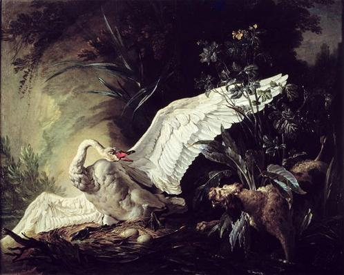 A Water Spaniel Attacking a Swan on its Nest, 1740