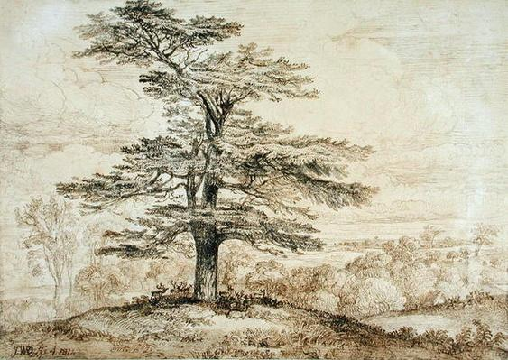 A Cedar on a Rise with a Herd of Deer Grouped Beneath its Shade, 1814