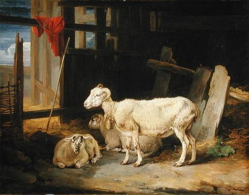 Heath Ewe and Lambs, 1810