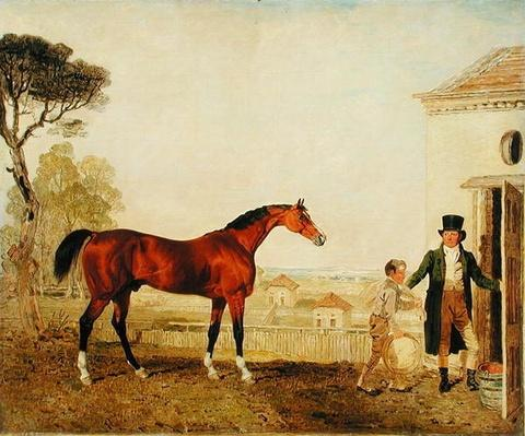 'Sultan' at the Marquess of Exeter's Stud, Burghley, 1826