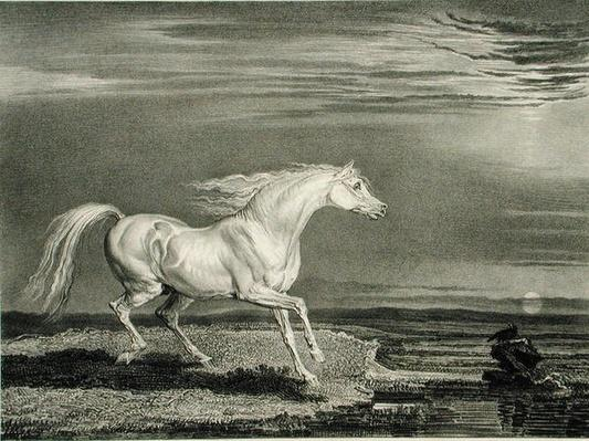 Marengo, from 'Celebrated Horses', a set of fourteen racing prints published by the artist, 1823-24