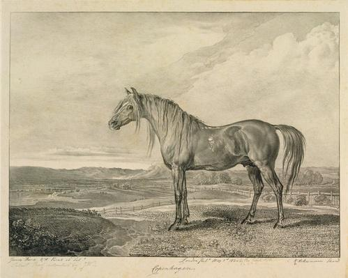Copenhagen, from 'Celebrated Horses', a set of fourteen racing prints published by the artist, 1823-24