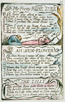 'My Pretty Rose Tree', plate 53