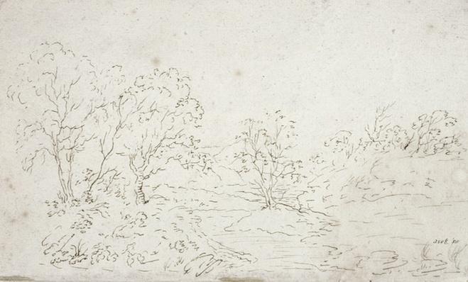 Landscape: a stream running between trees