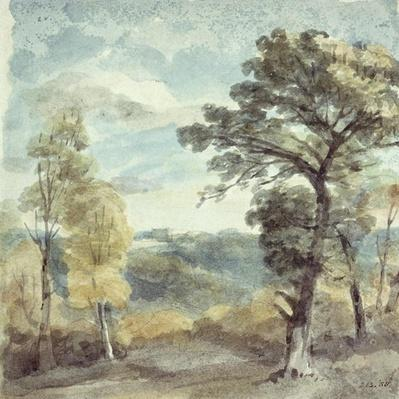 Landscape with Trees and a Distant Mansion