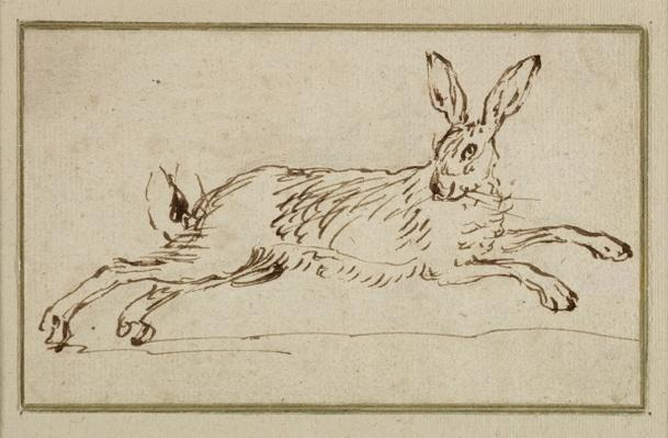 A Hare Running, With Ears Pricked