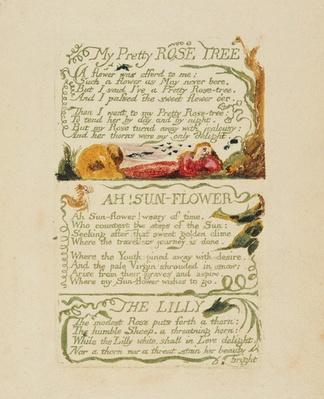 'My Pretty Rose Tree,' and 'Ah! Sun-flower,' and 'The Lily,' from 'Songs of Experience,' 1794