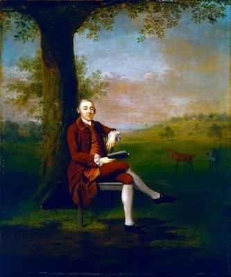 Portrait possibly of John Trevor, 3rd Baron Trevor of St. Anne's Hill, Surrey and Trevalyn Hall, Denbighshire, 1763