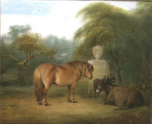 Pony and Donkeys in a Glade