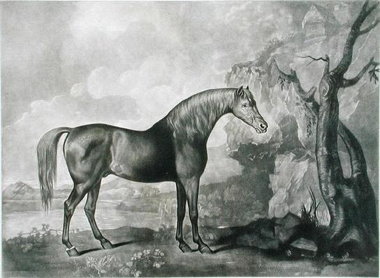 Brown Horse Mask, after George Stubbs, 1773