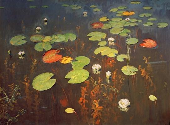Water Lilies 1895